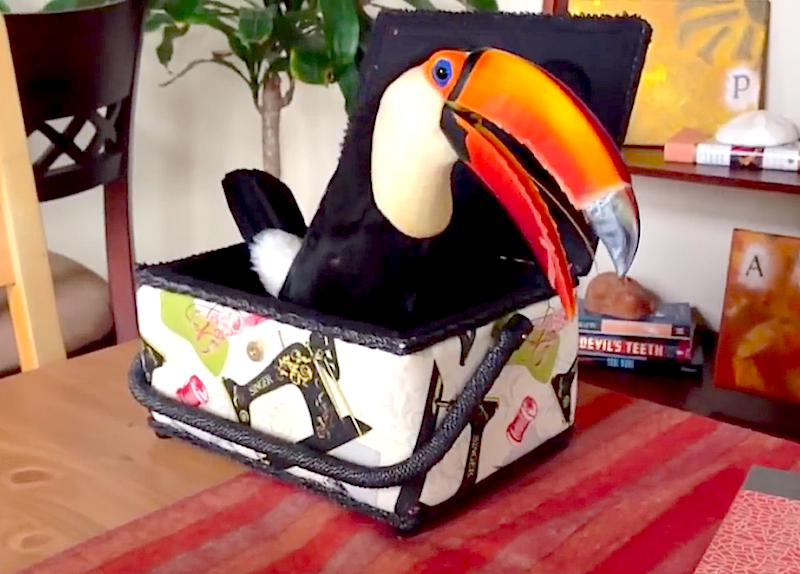 Cuteness Break: Toucan spends the afternoon playing inside of a sewing box