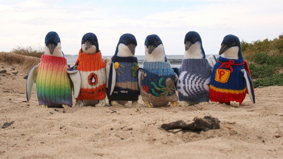 There's no other way to say this: A 109-year-old man is knitting penguin sweaters