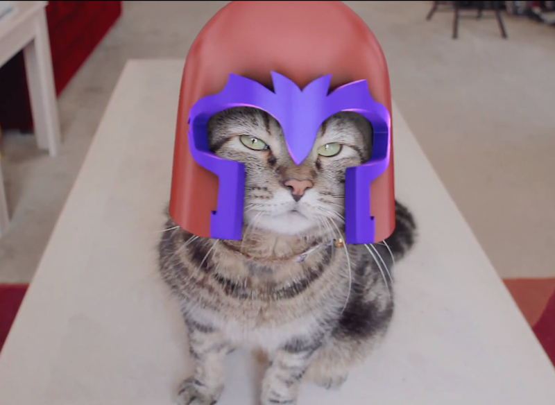 Catneto: If X-Men's Magneto was a house cat with an attitude