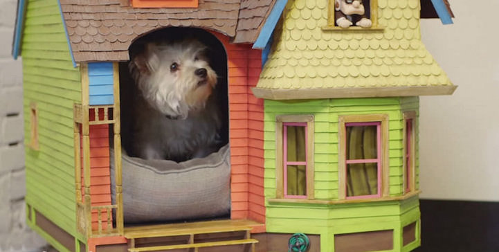Why yes, there IS a dog who lives in a dog house version of the 'Up' house