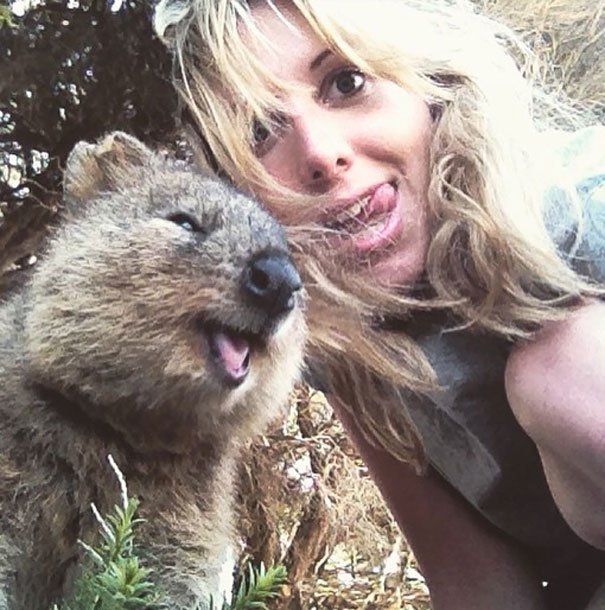 Meanwhile in Australia, everyone is taking selfies with the happiest looking animal ever