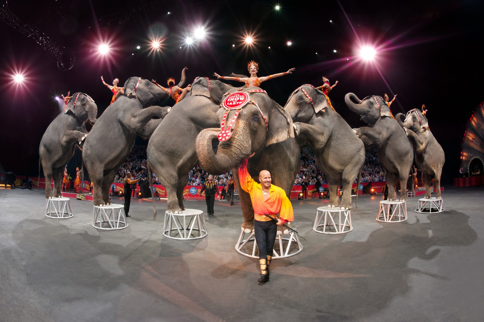Ringling Bros. is finally doing the right thing for elephants