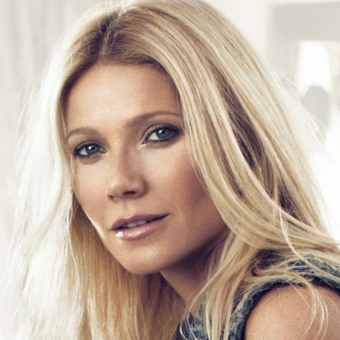 Gwyneth Paltrow handles criticism LIKE A BOSS