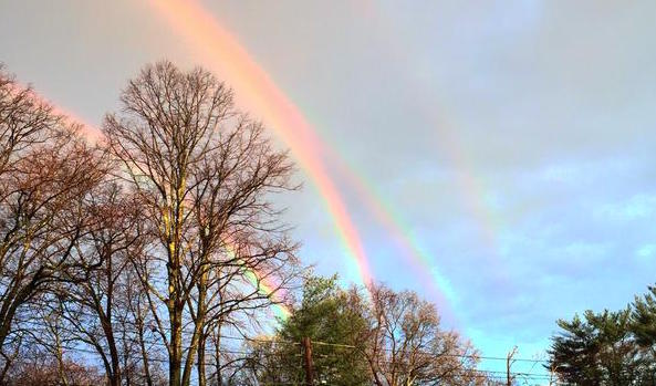 A quadruple rainbow exists, because the world actually is magic