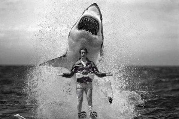 How to tell if your relationship has jumped the shark - HelloGiggles