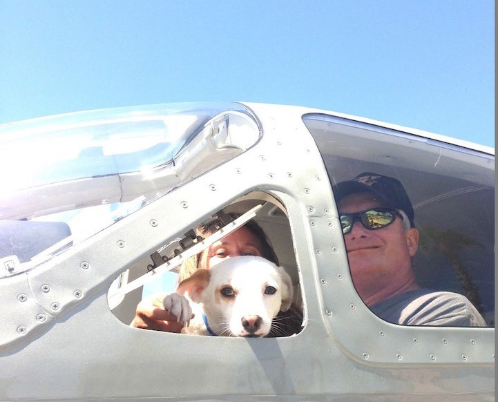 Heroes! These pilots are saving animals' lives every day