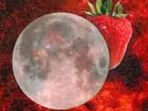 Guess What Happens Tonight Strawberry Moon Strawberry Moon