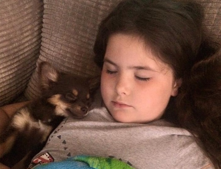 Remember how Facebook was searching for a little girl's lost dog? Here's an update!