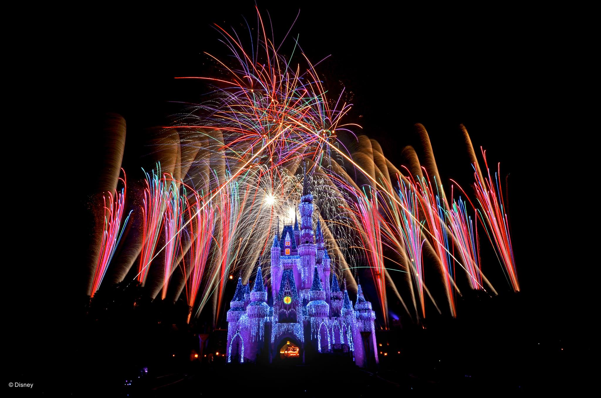 Selfie sticks and other weirdly random things banned at Disney World