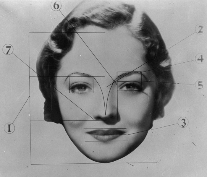 So, these are the perfect facial proportions according to this chart from the 1930s