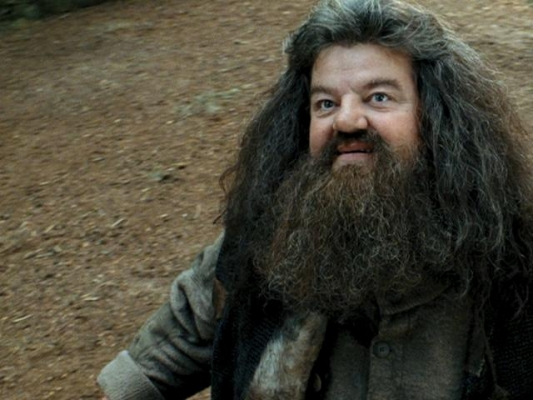 Everything I need to know, I learned from Rubeus Hagrid