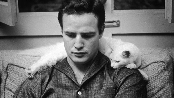 'Listen to Me Marlon' reveals a side of Marlon Brando we never got to see