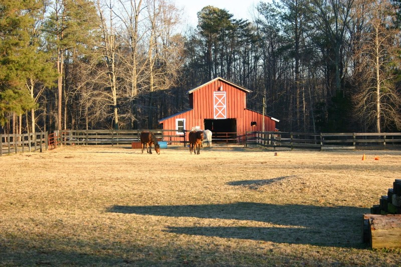 For $200 and an essay, you could own a seriously massive farm