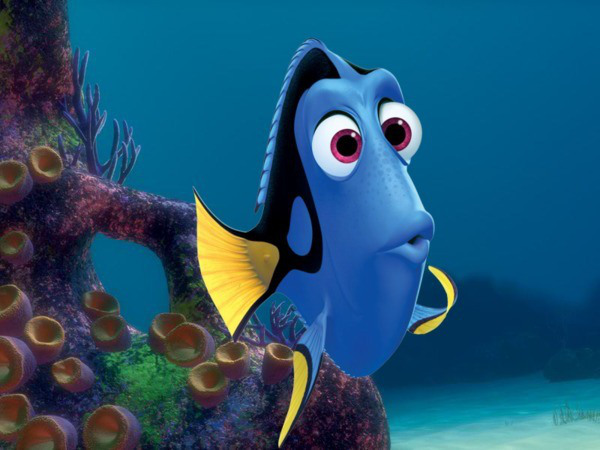 Just keep swimming! Here's what we know about 'Finding Dory'
