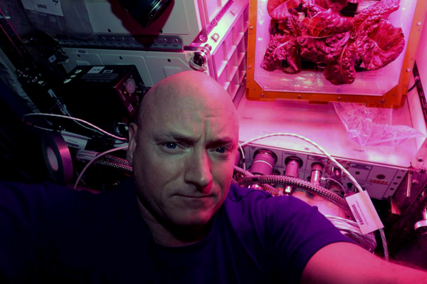 This food was grown in space and now astronauts are eating it