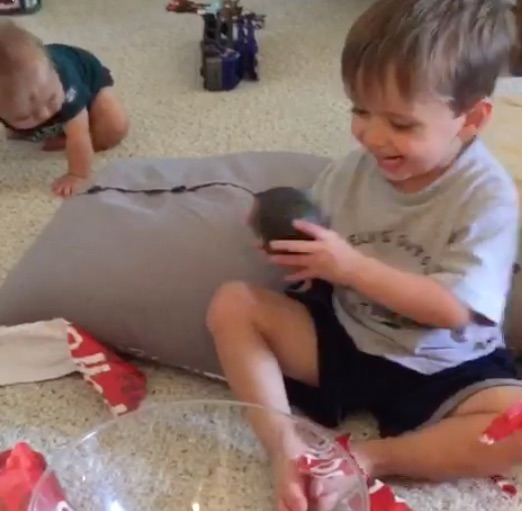 Kid gets an avocado as a gift and his reaction is all class