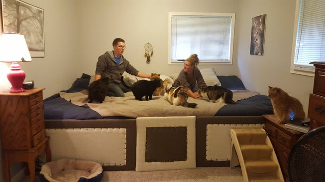 Behold: This couple created the ultimate pet-snuggling bed
