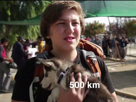 Syrian teen refugee who wouldn't leave his dog, receives outpouring of love