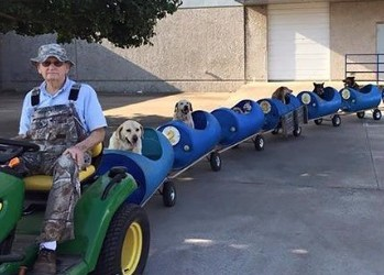 Just a simple dog train that takes rescue dogs on dog adventures