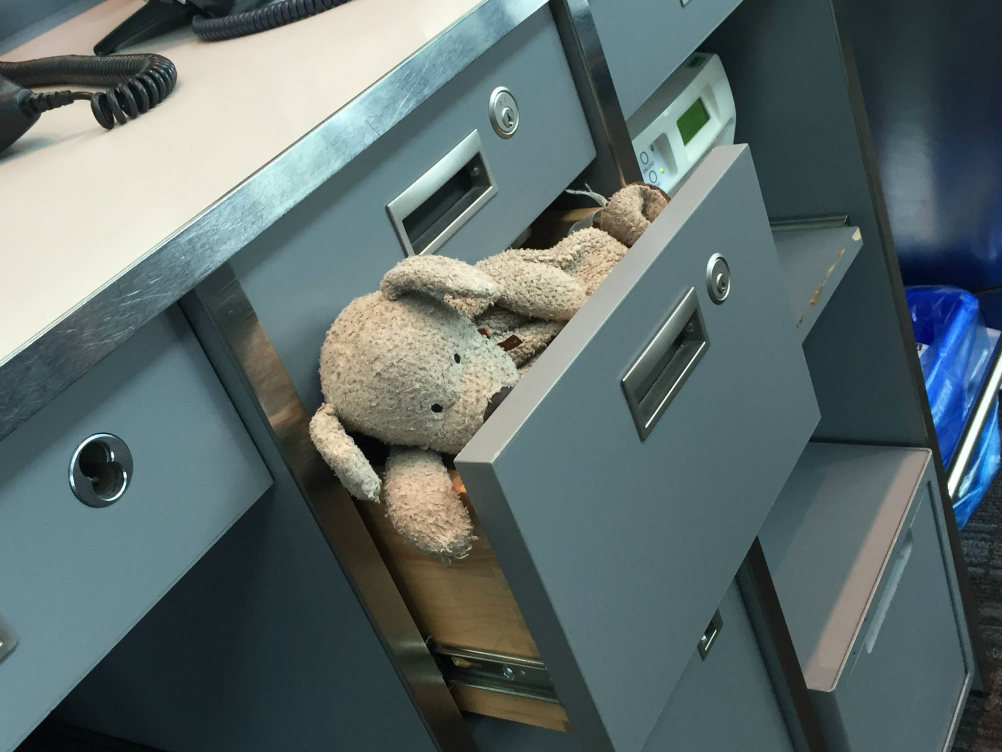 How RaRa the lost teddy bear found his way home