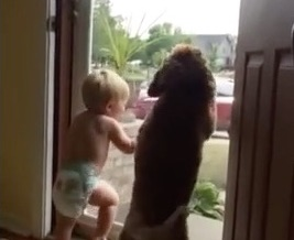 Toddler and dog are both really psyched about dad coming home