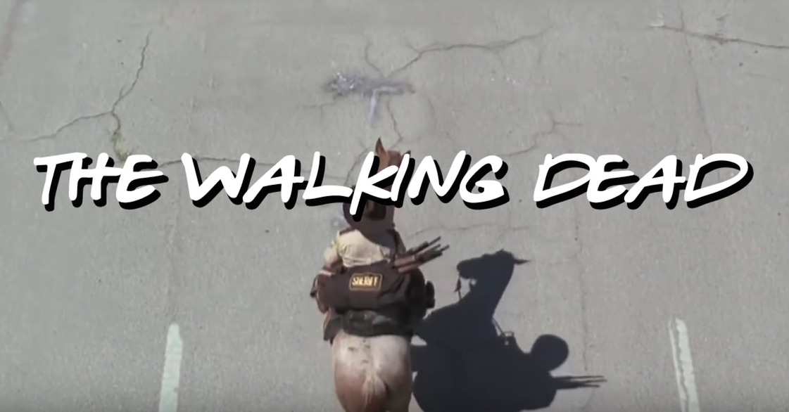 Somebody did a mashup of 'Friends' and the 'Walking Dead,' because it was time