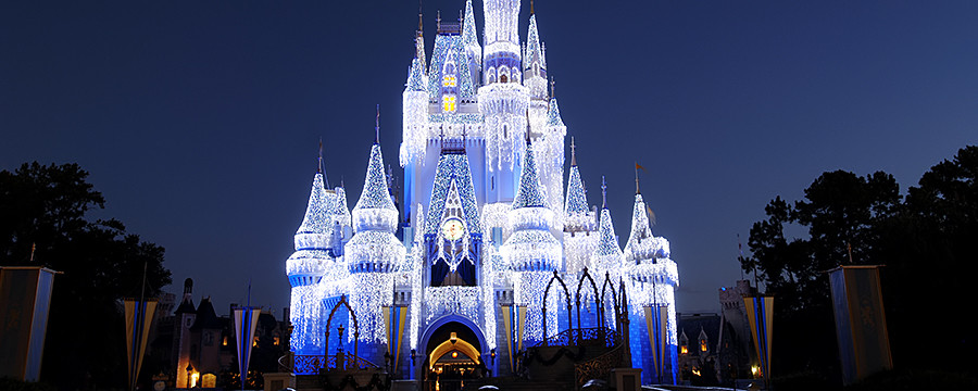 What I wish I knew when I quit my job to work at Disney World
