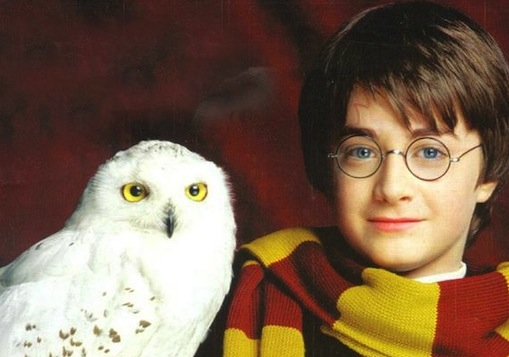 What I learned reading Harry Potter for the first time as an adult