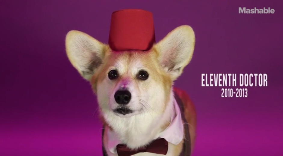 Here is a corgi dressed up as every Doctor from 'Doctor Who,' because Halloween