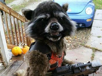 This kid's 'Guardians of the Galaxy' costume won Halloween for all of time