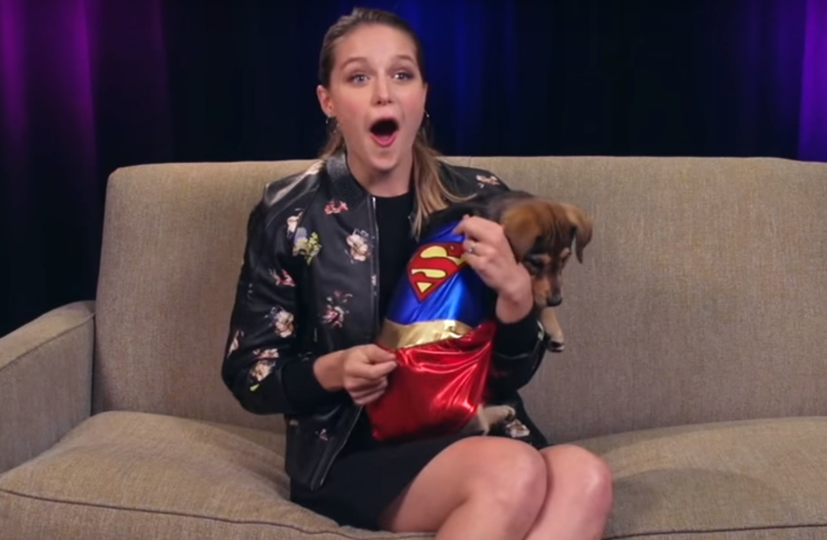 Supergirl's Melissa Benoist tries to answer questions while being swarmed by puppies