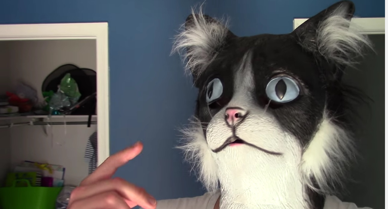 This is what happens when a human wears a cat mask in front of cats