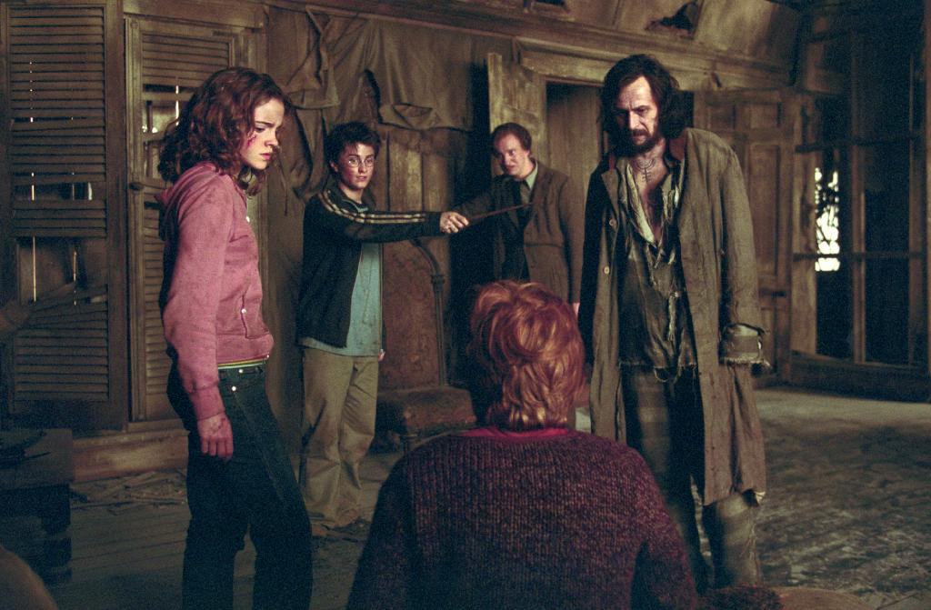 The 'Harry Potter' movies totally glossed over this super-sad description of Sirius and Lupin