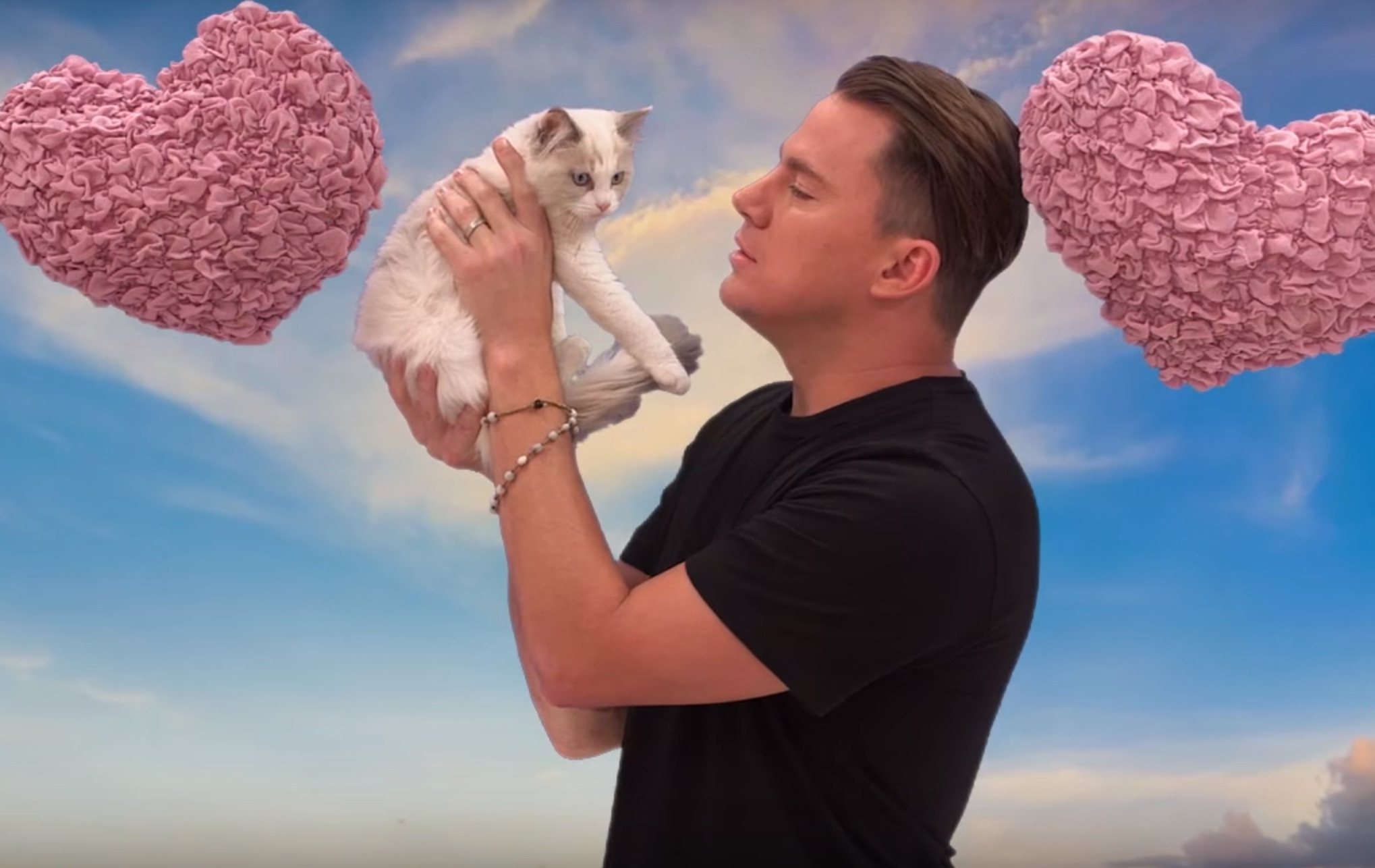 Channing Tatum vs. a kitten is the funniest thing you'll see all morning