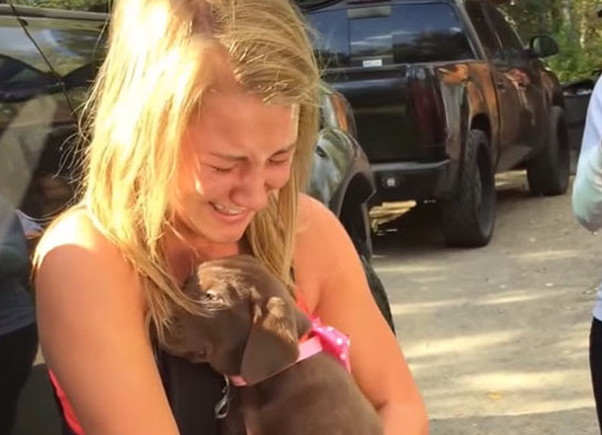This guy proposed to his girlfriend with a puppy and we can't control our tears