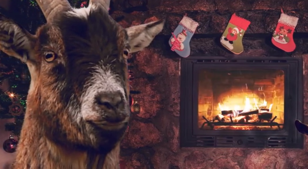 We never knew how much we needed Christmas carols sung by goats