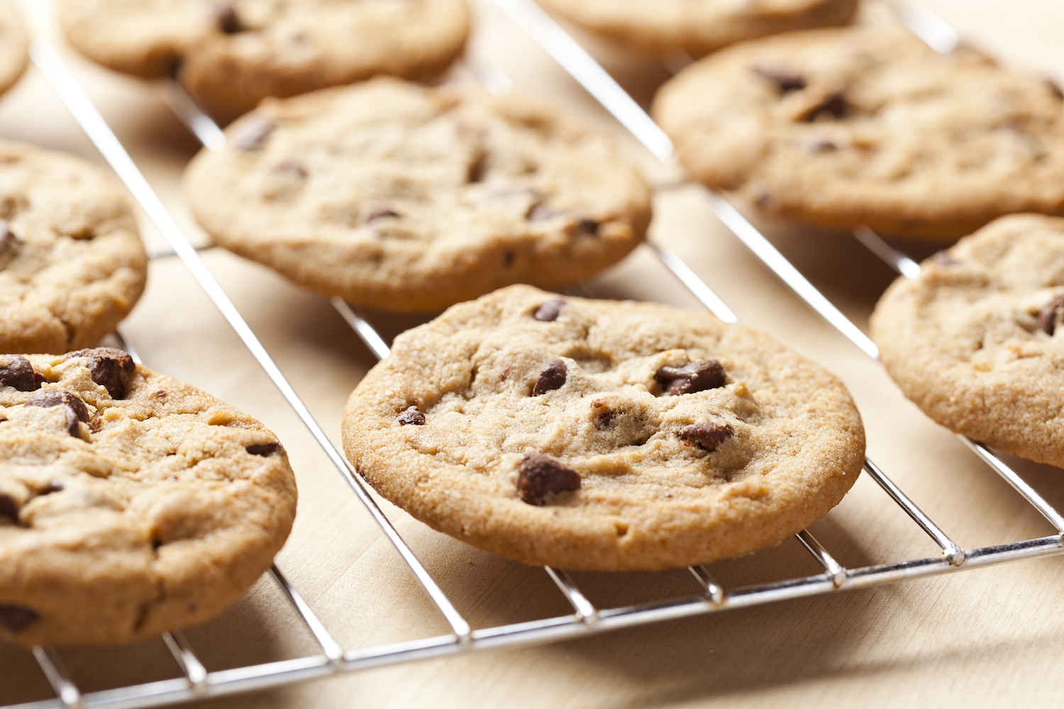 And the most searched-for cookies in each state are... *drumroll*