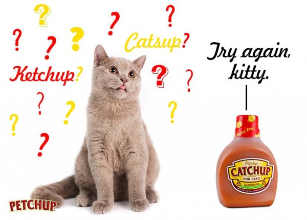 Meowstard and Catchup are very real condiments for cats