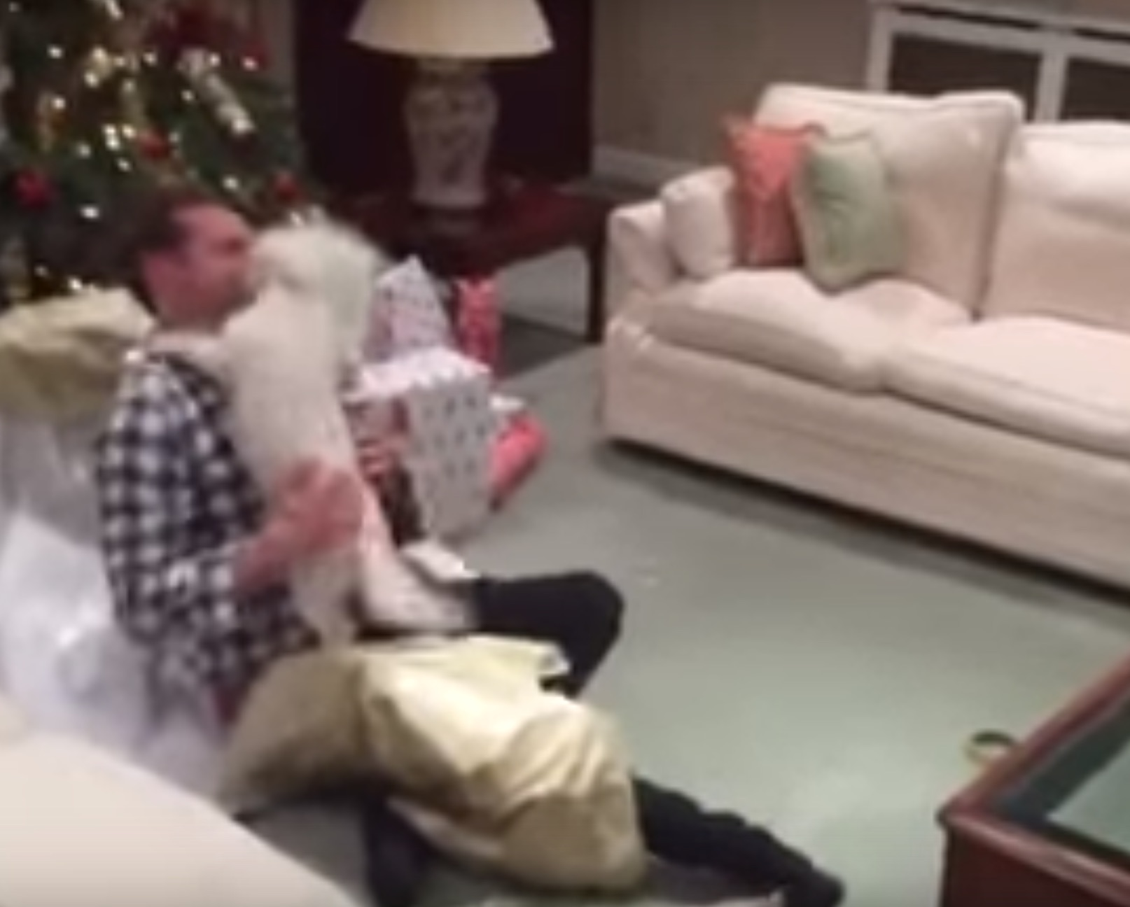 Close out 2015 with this video of a dog joyfully unwrapping its owner