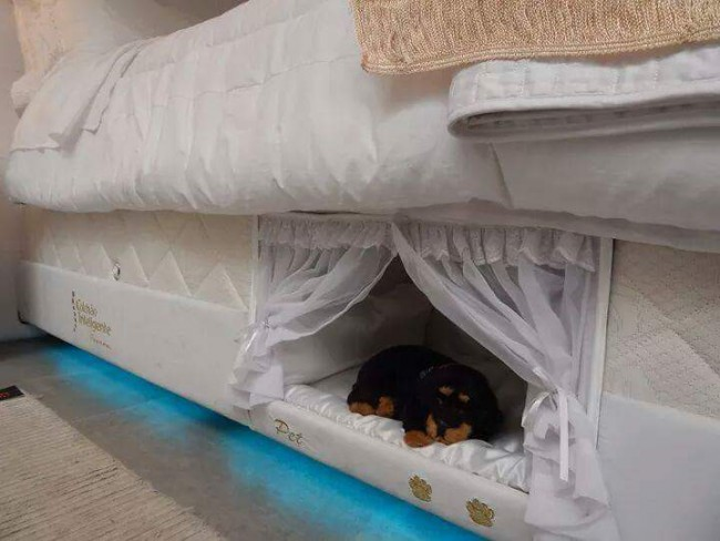 This mattress has a built-in bed for pets because fur baby love is real