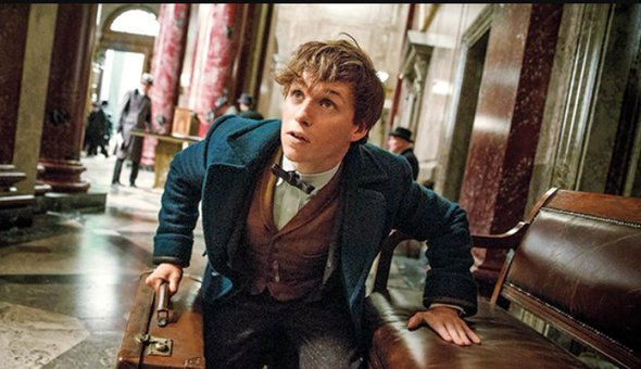 """Fantastic Beasts and Where to Find Them' was almost a documentary"