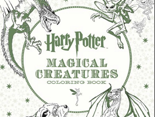 "We for real need this ""Harry Potter"" coloring book"