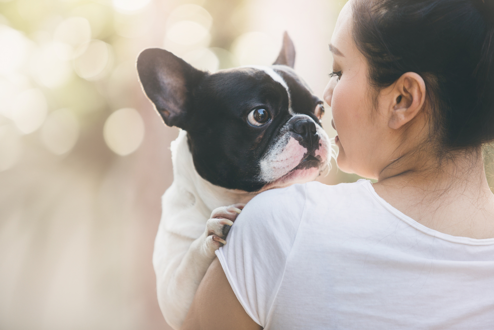 Your dog can read your face, which explains why it always knows how you're feeling