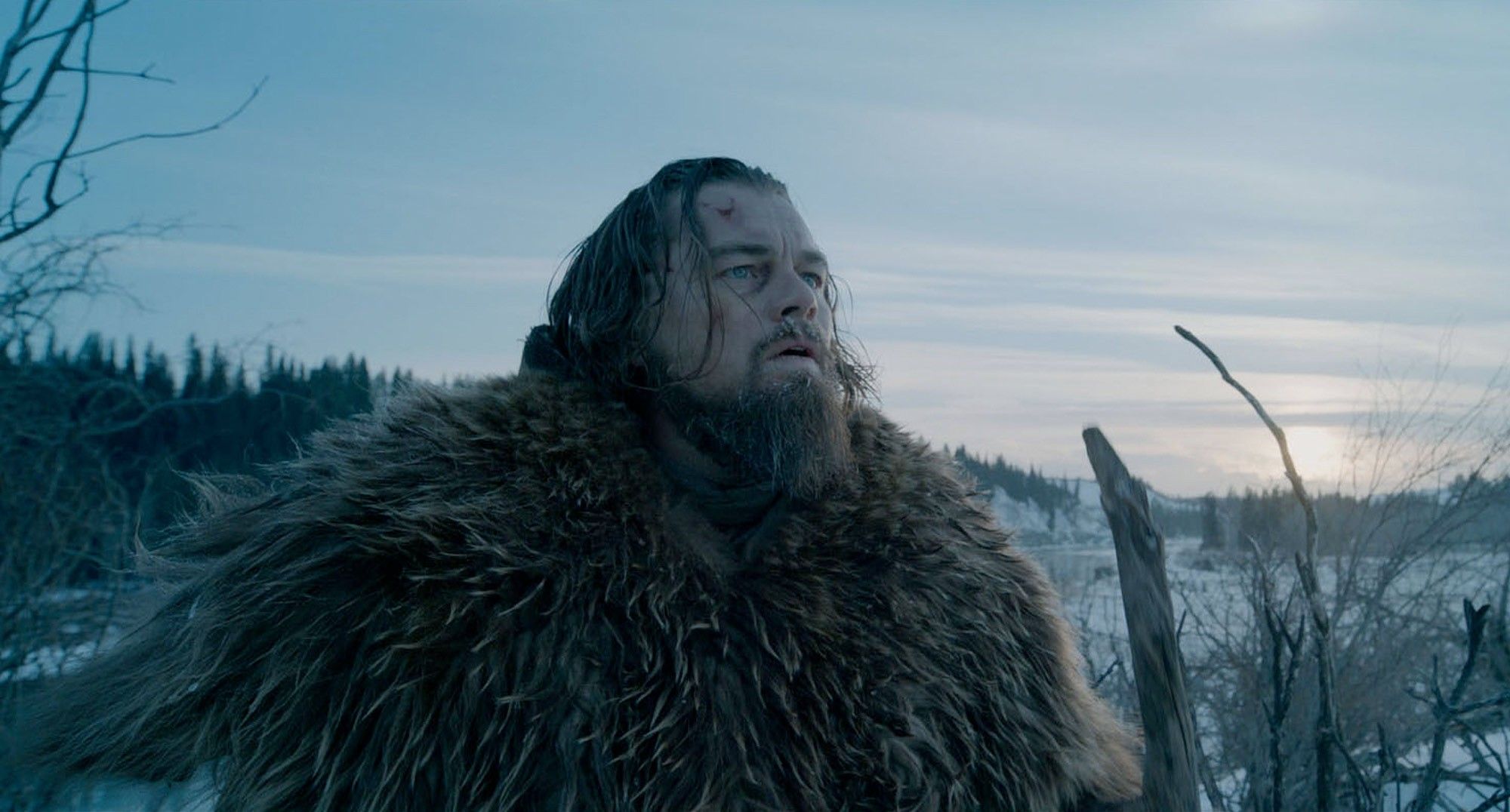 If Leonardo DiCaprio doesn't get an Oscar this year, these fans are going to MAKE him one