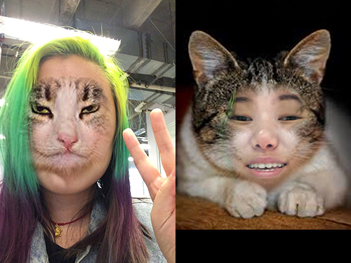 The Face Swap Live app is hilariously terrifying