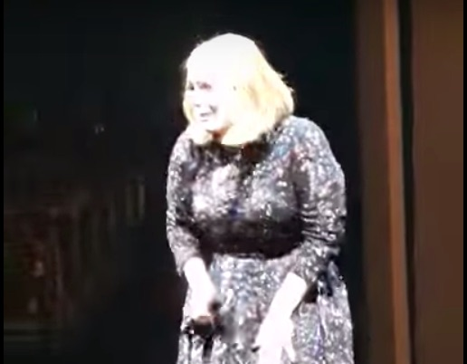 Adele surprises couple who got engaged at her concert by bringing them onstage