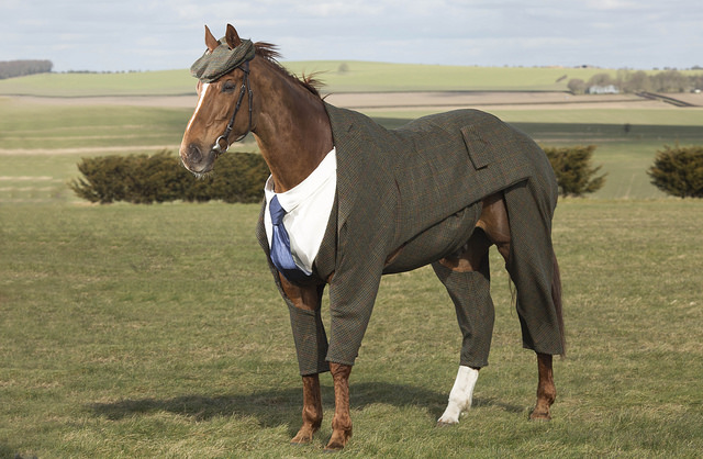 This horse is wearing a three-piece suit and we have absolutely no chill about it