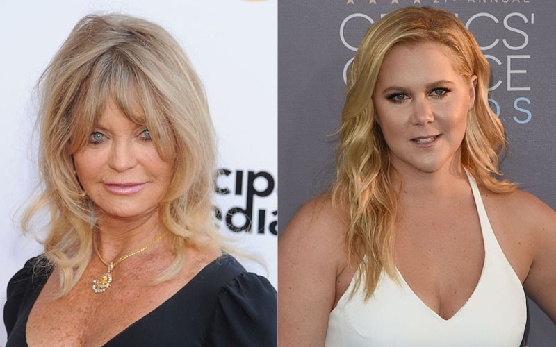 Goldie Hawn just majorly gushed about working with Amy Schumer