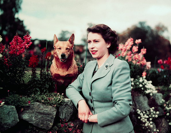"New site ""Keeping Up with the Queen"" shows what the Queen of England was doing at your age"