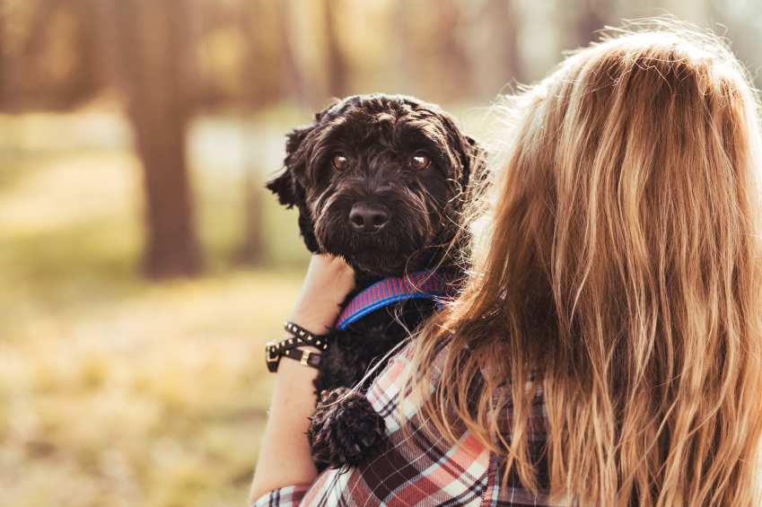Here's the distressing reason you really shouldn't hug your dog